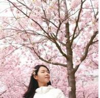 qqroyalbet88 or 188thai Memahami konsep 'Ikigai' Ala Orang Jepang, Biar Lebih Semangat Bangun Tiap Pagi dan Menjalani Hari